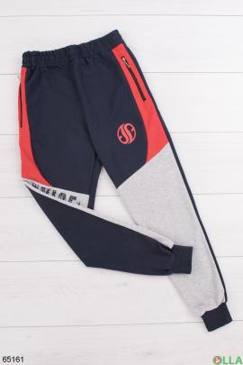 Мужские спортивные сине-серые брюки