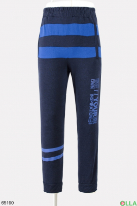 Мужские спортивные синие брюки со вставками